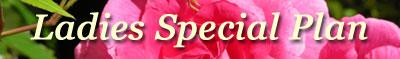アイラカフェ・ホームページサービス/ホームページ制作と検索エンジン最適化対策・札幌市