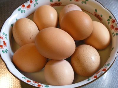 くさなぎ農園 有精自然卵