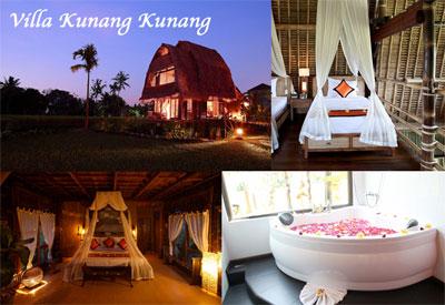 2012 Villa Firefly Ubud,Bali