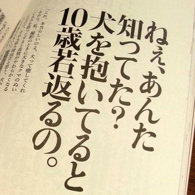 ikkoの心の格言