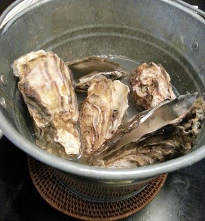 牡蠣ガンガン・ガーリック蒸し