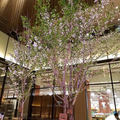 """""""赤レンガテラスの桜"""""""