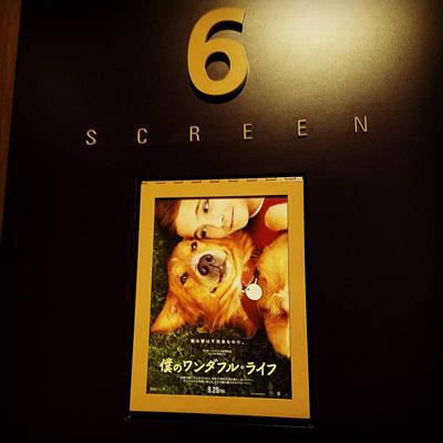 """""""札幌の映画館情報"""""""