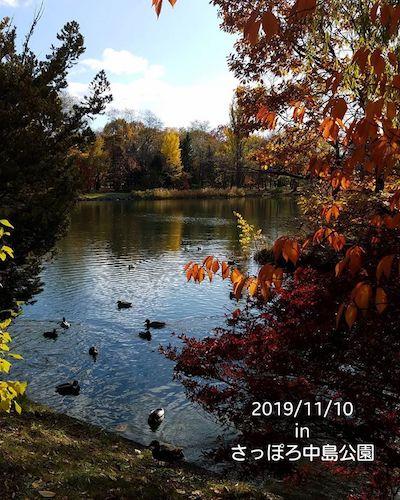 札幌の紅葉